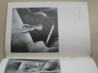 Radko Mašata - obrazy - Katalog výstav (1983)