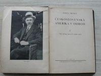 Vojta Beneš - Československá Amerika v odboji I. - Od června 1914 do srpna 1915 (1931)