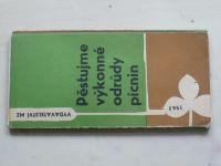 Pěstujeme výkonné odrůdy pícnin (1967)