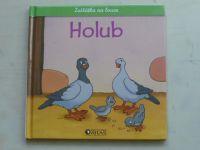 Holub, holubice a holoubě (2006)