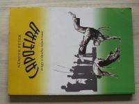 Neméth - Capoeira (2007) maďarsky, Capoeira - nebo boj skrytý v tanci
