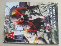 Areport 9 (2009)