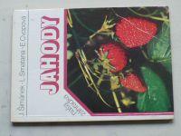 Cvopová - Jahody (1984) slovensky