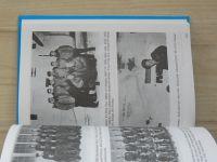 Pajer - Ve stínu slávy (1992) bojový výcvik československých letců, příslušníků bombardovacích a dopravních jednotek RAF, ve Velké Británii v letech 1940 až 1946