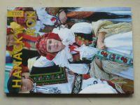 Hanácký rok 2011 (2010)