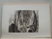 Troska - Záhadný ostrov (1942) il. ak. malíř V. Živný