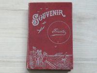 Souvenir Trieste - Leporelo 16x11 cm 20 listů - foto