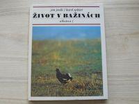 Jeník, Spitzer - Život v bažinách (1984)