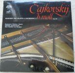 Čajkovskij – Koncert pro klavír a orchestr č.1 B moll op.23 (1988)