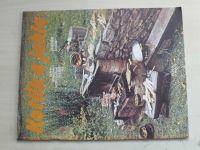 Sešity domácího hospodaření - svazek 165 - Uher - Kotlík a jehla (1990)