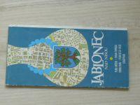 Plán města - 1 : 10 000 - Jablonec nad Nisou (1982)
