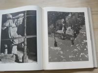 ZIELEŃ WARSZAWY - Henryk Lisowski 1956 (polsky) Zelená místa Varšavy