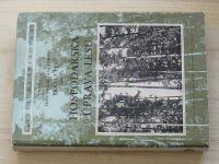 Dr. Korf - Hospodářská úprava lesů (1955)