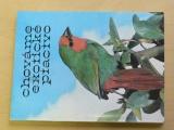 Chováme exotické ptactvo (1981)