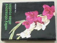 Novák - Velký obrazový atlas rostlin (1981)