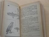 Mladý přírodovědec 1. a 2. stupeň (PO SSN 1983)