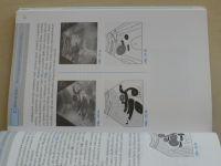 Hofer - Kurz sonografie (2005)