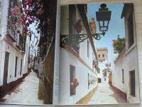 Ganz Sevilla (1. vydání 1979, německy)