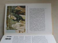 Dvořák - Za brouky Saharou (1981)