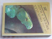 Niedl - Okouzlen brouky a hady (1986)