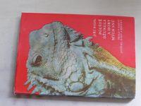 Niedl - Pouště, džungle a hory mých snů (1978)
