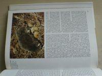 Black - Zázraky ve světě zvířat (1988) ex libris a podpis Františka Heja Mračovského