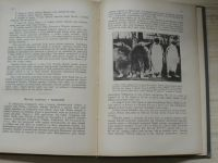 Kořenský - Z dalekých krajin - kulturní obrázky z různých zemí (1927)
