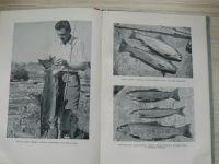 Šimek - Rybářství na tekoucích vodách (SZN 1954)