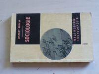 Zygmunt Baumann - Sociologie (1965)