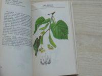 Černá, Guth - Kapesní herbář léčivých rostlin (1985)
