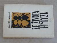 Čapkové - Ze života hmyzu (1958)