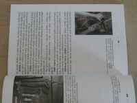 Šenfeldová - Pletení z proutí od A do Z (1995)