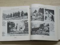 Holub - Zrazené pevnosti (1982) čs. pohraniční opevnění