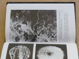 Bulancev - Záhadní mimozemšťané (1995)