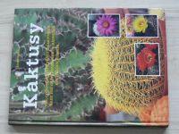 Vermeulen - Kaktusy (1998)