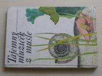 Diekmannová - Tajemný mužíček z mušle (1979)
