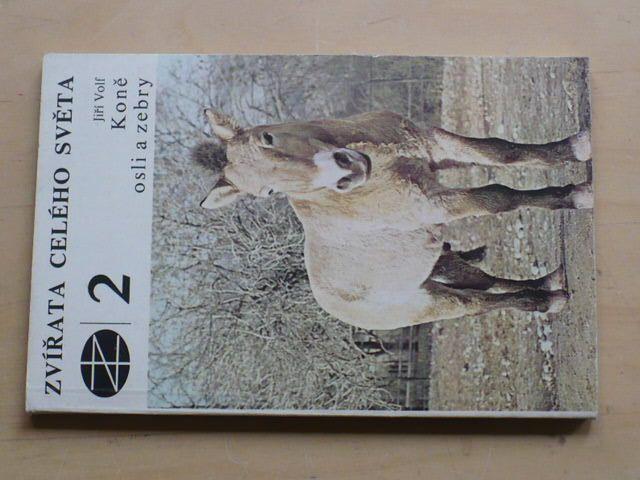 Volf - Koně, osli a zebry (1980)