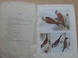 Prof. Janda - O vhodné ochraně ptactva (1935)