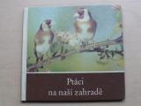 Massny - Ptáci na naší zahradě
