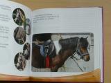 Sandy Ransford - Můj první poník (2006)